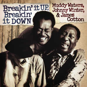 Muddy Waters, Johnny Winter & James Cotton