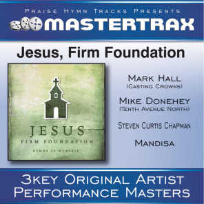 Mike Donehey (Tenth Avenue North), Steven Curtis Chapman, Mark Hall (Casting Crowns) and Mandisa