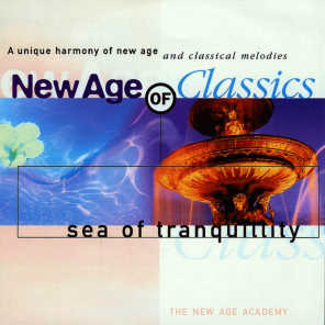 The New Age Academy