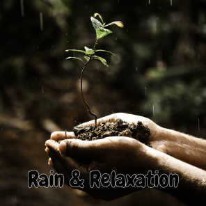 Rain Sounds & White Noise, Water Sound Natural White Noise, Rain Sounds, Rain For Deep Sleep