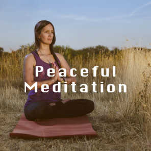 Yoga, Native American Flute and Relaxing Music Therapy