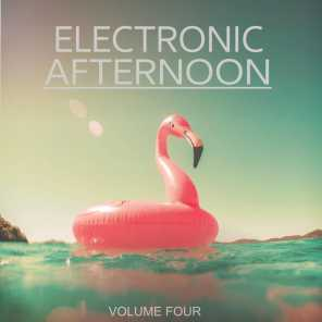 Electronic Afternoon, Vol. 4