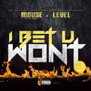 Mouse and Level