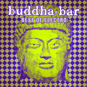 Buddha Bar Best of Electro : Rare Grooves