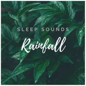 #Rain and #Forest Sounds for Sleep