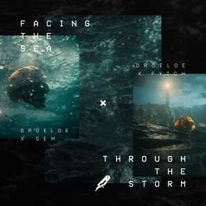 Facing The Sea / Through The Storm