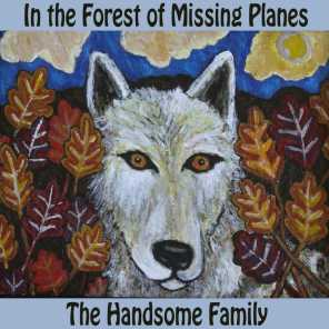 In The Forest of Missing Planes