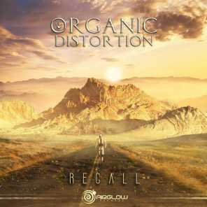 Organic Distortion