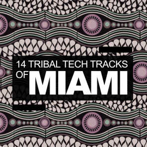 14 Tribal Tech Tracks Of Miami