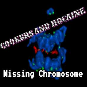 Cookers And Hocaine, Ziondread