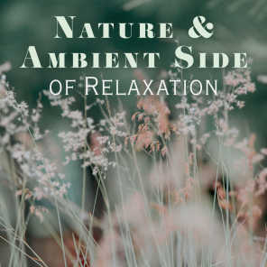 Soothing Sounds, Relaxing Music, Yoga Sounds