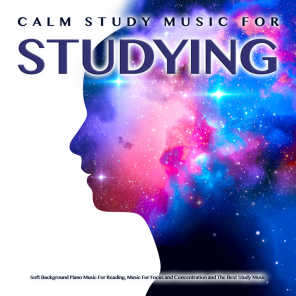 Studying Music, Concentration Studying Music Academy, Piano For Studying