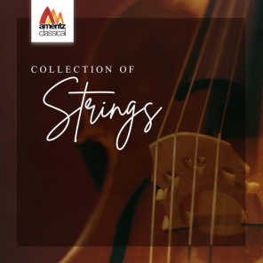 Academy of St. Martin in the Fields Orchestra & Kenneth Sillito