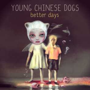 Young Chinese Dogs