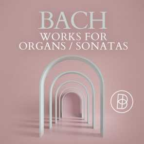 Bach: Works for Organs / Sonatas