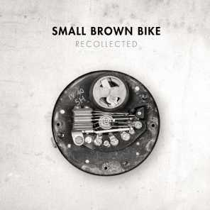 Small Brown Bike