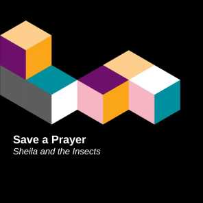 Sheila and the Insects