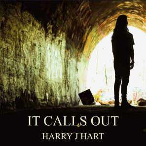 Harry J Hart