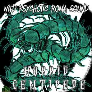 Wild Psychotic Roma Sound