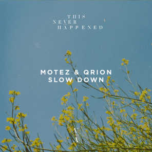 Motez & Qrion