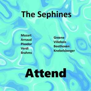 The Sephines