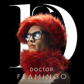 Doctor Flamingo