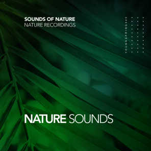 Sounds Of Nature, Nature Recordings
