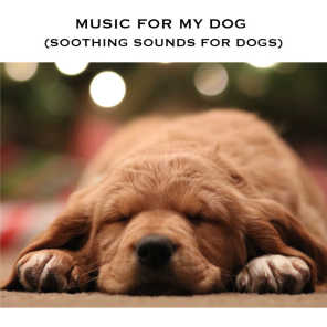 Serene Rose, Music For My Dog & Relax Dogs