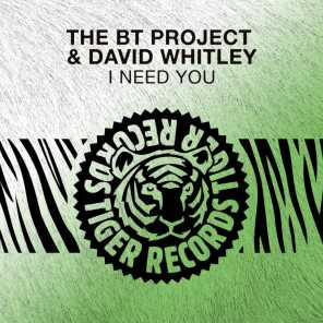 The BT Project & David Whitley