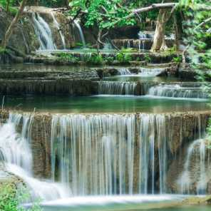 Waterfall Sounds Reserve, Nature Sounds Reserve & Sounds of Nature Zone