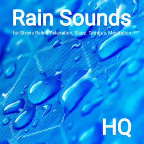 Rain Sounds by Donat Grubb