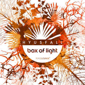 Box Of Light EP