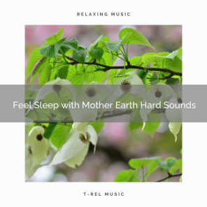 Weather and Nature Recordings
