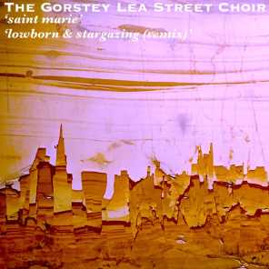 The Gorstey Lea Street Choir