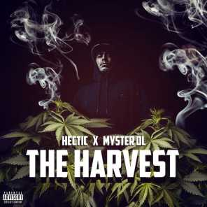 Hectic & Myster Dl