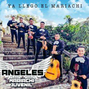 MARIACHI JUVENIL ANGELES