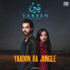 Yaqeen The Band