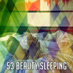 All Night Sleeping Songs to Help You Relax