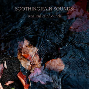 Rain Sounds For Sleep, The Nature Soundscapes & amazing Spa Experience
