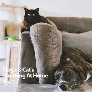 Music for Pets, Pets & Dogs