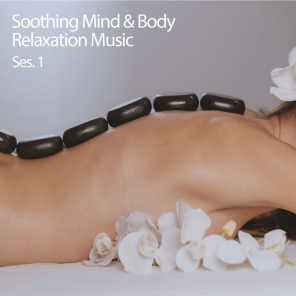Classical Music For Relaxation & Relaxing Music For Stress Relief