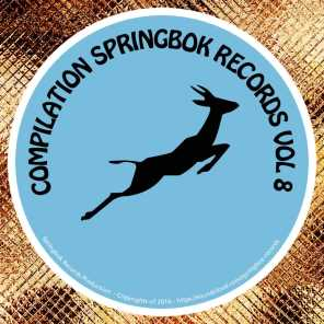 Compilation Springbok Records, Vol. 8