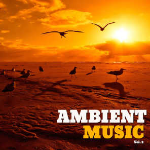 Ambient Music, Vol. 2