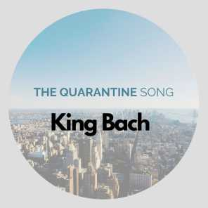 The Quarantine Song
