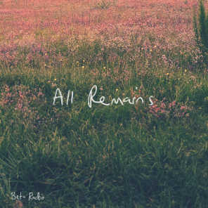 All Remains