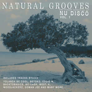 Natural Grooves - The Finest Selection of Nu Disco, Vol. 1