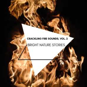 Bright Nature Stories - Crackling Fire Sounds, Vol. 2