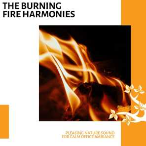 The Burning Fire Harmonies - Pleasing Nature Sound for Calm Office Ambiance