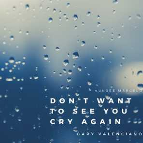 Don't Want to See You Cry Again