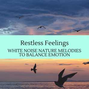 Restless Feelings - White Noise Nature Melodies To Balance Emotion